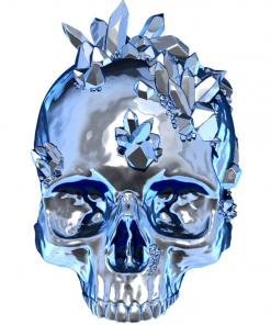 Fichier : Reproduction d'un crâne humain avec cristaux au format numérique face