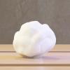 Reproduction d'une truffe au format numérique