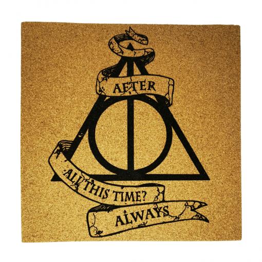Films - Harry Potter - Reliques de la mort